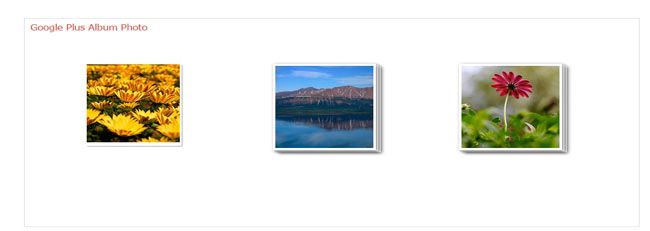 GooglePlus Album - jQuery as like Google Plus effect image hover