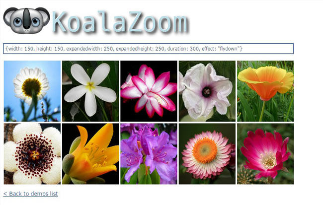 KoalaZoom - On Mouse zooming image jQuery effect